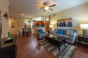 One Bedroom Apartments for Rent in Katy, TX - Living & Dining Rooms and Kitchen